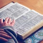 Reporte de Lectura Formatos